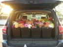a hatch-full of dahlias