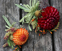 Dahlias are an inspired choice for boutonnieres.
